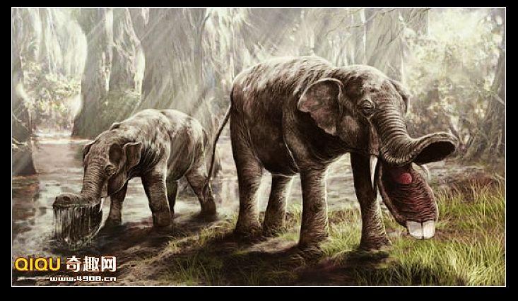不可思议的史前动物——铲齿象